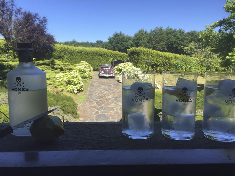 Momentos VONES Gin